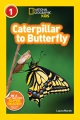 Product Caterpillar to Butterfly