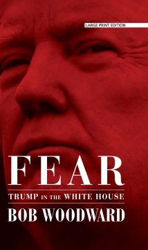 Product Fear: Trump in the White House