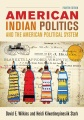 Product American Indian Politics and the American Politica