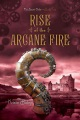 Product Rise of the Arcane Fire