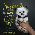 Product Norbert's Little Lessons for a Big Life 2019 Calendar