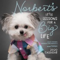Product Norbert's Little Lessons for a Big Life 2020 Calendar