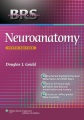 Product Neuroanatomy