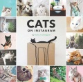 Product Cats on Instagram