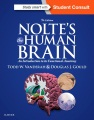 Product Nolte's the Human Brain