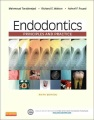 Product Endodontics