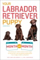 Product Your Labrador Retriever Puppy Month by Month