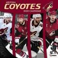 Product Arizona Coyotes 2020 Calendar