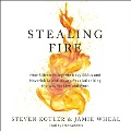 Product Stealing Fire: How Silicon Valley, the Navy Seals, and Maverick Scientists Are Revolutionizing the Way We Live and Work; Library Edition