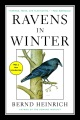 Product Ravens in Winter