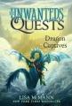 Product Dragon Captives