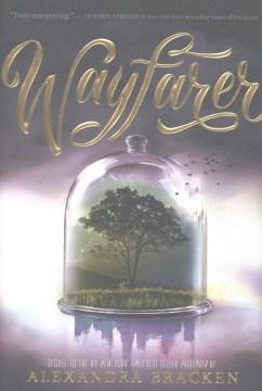 Product Wayfarer