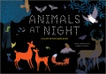 Product Animals at Night