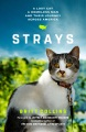Product Strays