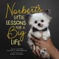 Product Norbert's Little Lessons for a Big Life