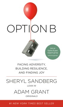 Product Option B: Facing Adversity, Building Resilience, and Finding Joy