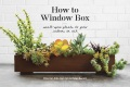 Product How to Window Box