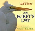 Product An Egret's Day