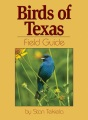 Product Birds Of Texas Field Guide