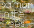 Product Salmon in the Trees