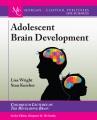 Product Adolescent Brain Development