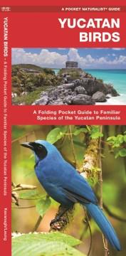 Product Yucatan Birds