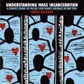 Product Understanding Mass Incarceration