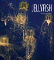 Product Jellyfish