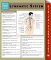 Product Lymphatic System