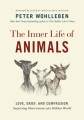 Product The Inner Life of Animals: Love, Grief, and Compassion: Surprising Observations of a Hidden World