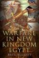 Product Warfare in New Kingdom Egypt
