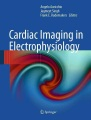 Product Cardiac Imaging in Electrophysiology
