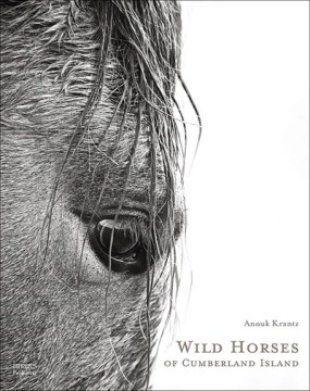 Product Wild Horses of Cumberland Island