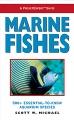 Product Marine Fishes: 500+ Essential-To-Know Aquarium Species