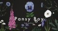 Product Pansy Boy