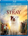 Product The Stray